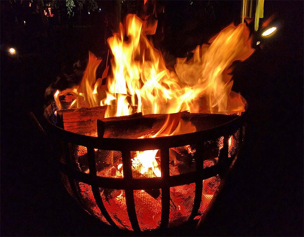 じゅんさい池公園 夜桜 かがり火