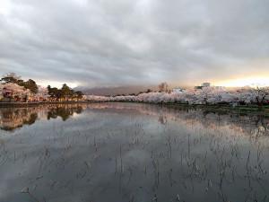上越市 高田城百万人観桜会 西外堀からの風景写真