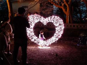 日本三大夜桜 上越市 高田城百万人観桜会 さくらロード内で見かけたかわいい子の写真