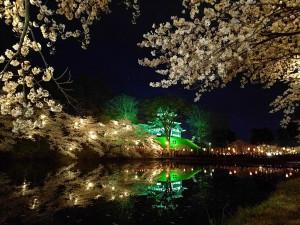 日本三大夜桜 上越市 高田城百万人観桜会 某TV局撮影アングルからの高田城風景写真