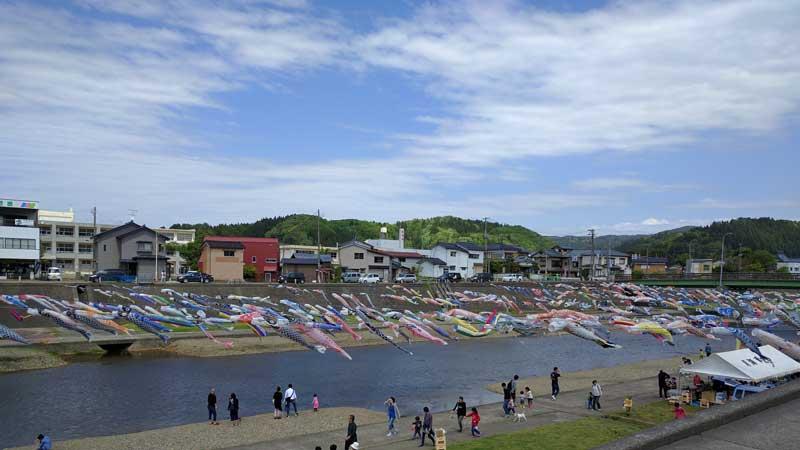 加茂川 鯉のぼり 道路沿いからの眺め