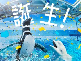 上越市立水族博物館「うみがたり」オープン