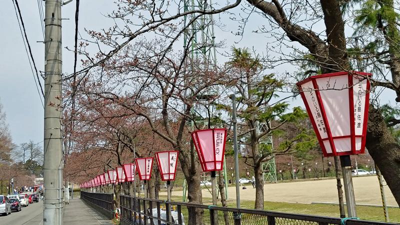 高田公園_2019年3月30日