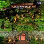 よいた楽山苑 ライトアップ